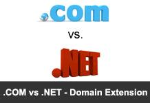 com vs net Domain Extensions